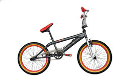Rooster Big Daddy Fat Tyre Freestyle BMX Bike, Grey/Silver - 9.5